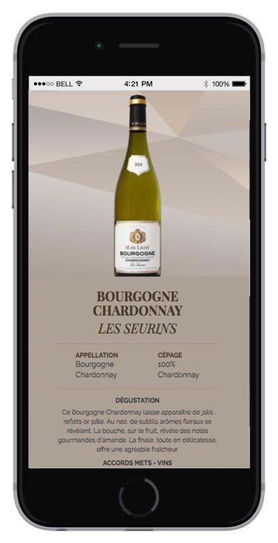 03_bis-siteweb-creation-bourgogne-deligny