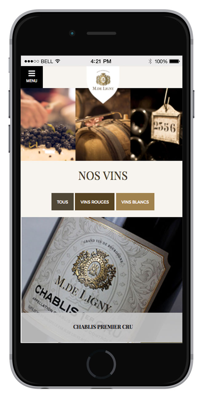 03_siteweb-creation-bourgogne-deligny