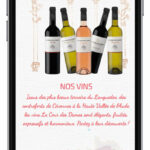 03_prestataire-creation-site-internet-vin-Languedoc