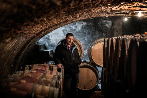 conseil-marketing-vin-bourgogne