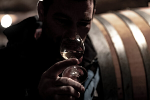 conseil-strategie-digitale-vin