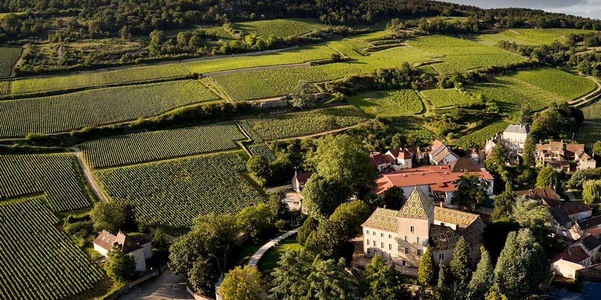 chateau-philippe-le-hardi-bourgogne-creation-pacakging-vin
